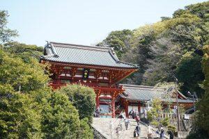 Tsurugaoka Hachimangu Shrine: iconic Kamakura shrine only an hour away from Tokyo